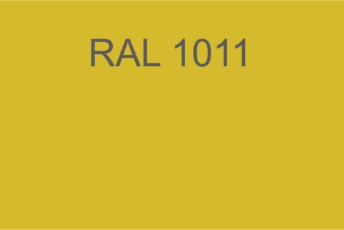 009 RAL 1011