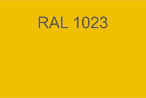 020 RAL 1023