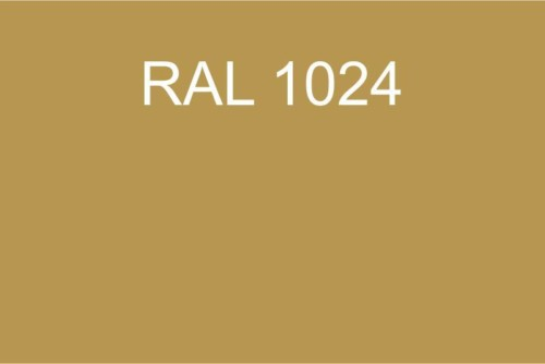 021 RAL 1024