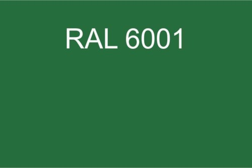 090 RAL 6001