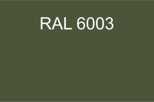 092 RAL 6003