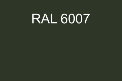 096 RAL 6007