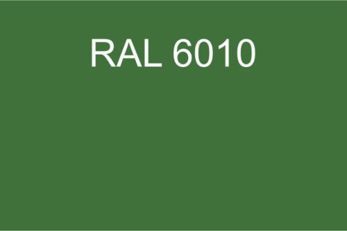 099 RAL 6010
