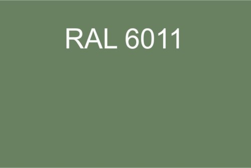 100 RAL 6011