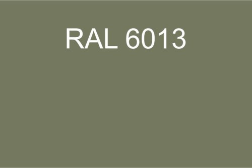 102 RAL 6013
