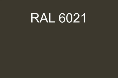 110 RAL 6021