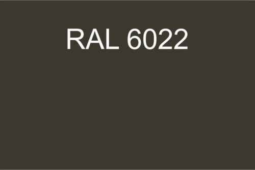 111 RAL 6022