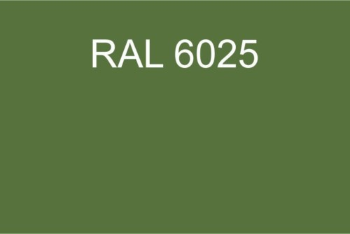 113 RAL 6025