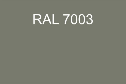 124 RAL 7003
