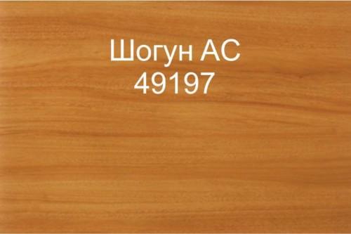 46 Шогун AC 49197